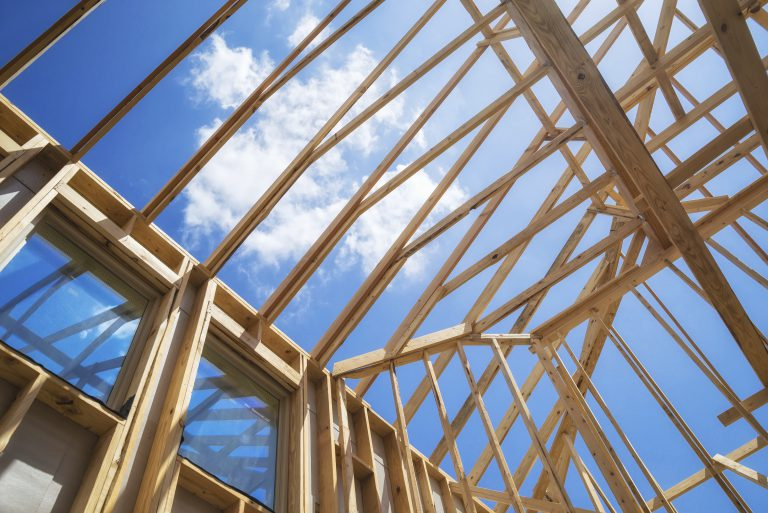 Building the Timber Frame House The Revival of a